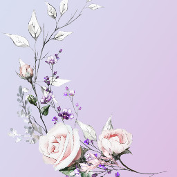 gradient flowers background backgrounds freetoedit