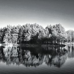 reflection lake trees blackandwhite freetoedit pcreflections reflections