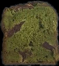 #面包#抹茶面包#美食