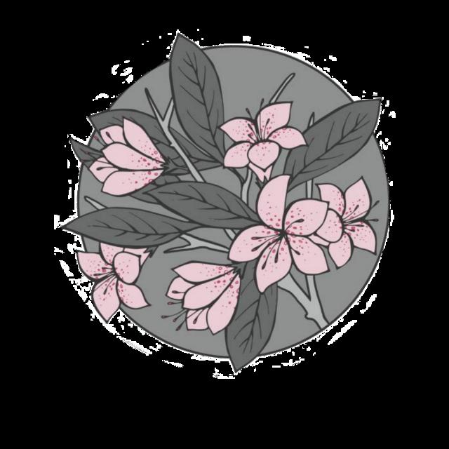 #aesthetic #flover #anime #soft