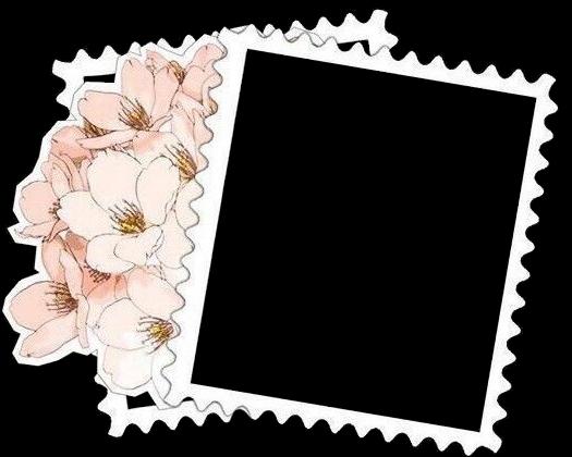 #aesthetic #polaroid #polaroidframe #flowers #prettyaesthetic #softaesthetic #pinkaesthetic #sticker