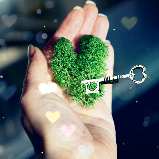 #moss #heart #key  #scandinavianmos