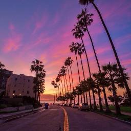 ectestpurplesunset testpurplesunset sunsetphotography sunset