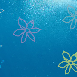 background backgrounds underwater flowers freetoedit