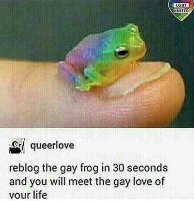 Is it just me or is this frog so  c u t e ¿ #freetoedit