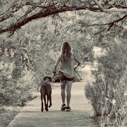 angeleyesimages landscape landscapephotography dog dogs