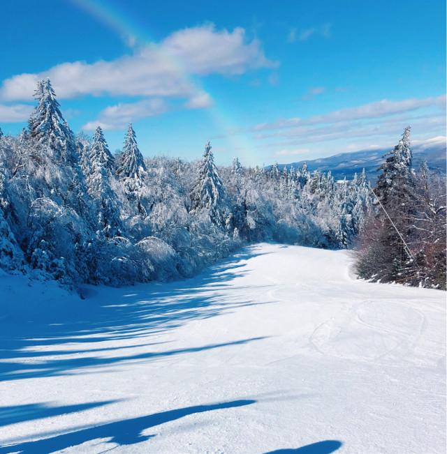 #winter #winterbliss #vermont #okemo #skiing