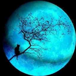 bluemoon freetoedit scmoon moon