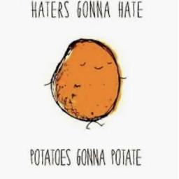 hatersgonehate hatersbackoff haters potato potatoes