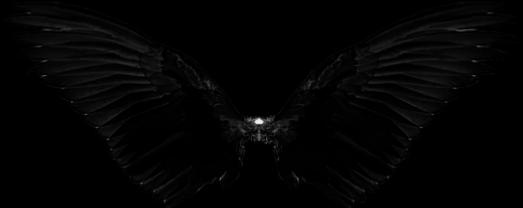 wings wing black blackwings fly freetoedit