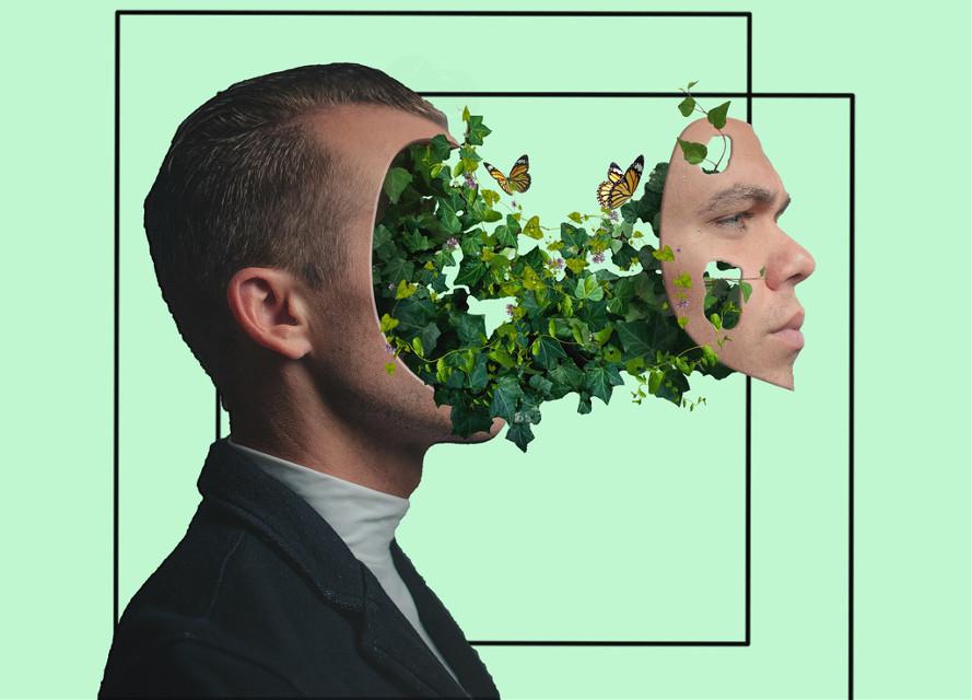 #freetoedit #boy #man #plants #nature #aesthetic #frame #outline