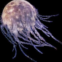 fantasy insomnia bp jellyfish moon freetoedit scmoon