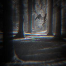 freetoedit snoriginals forest dark glitch