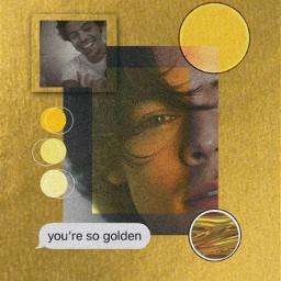 golden harrystyles lyrics aesthetic aestheticwallpaper freetoedit