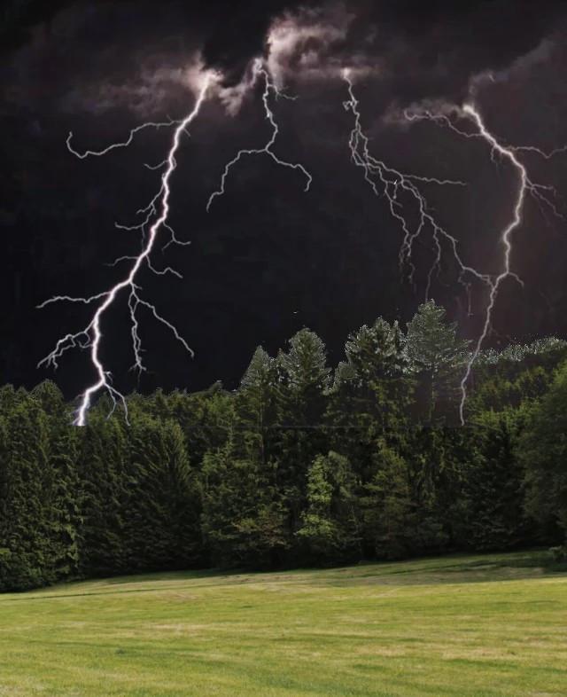#bosque #forest #verde #green #cielo #sky #tormenta #storm # rayos #ray