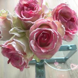 happyday lovemyjob danke friendshipday