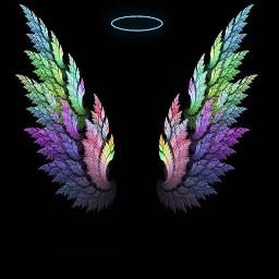 wing wings angel tumblr photo freetoedit