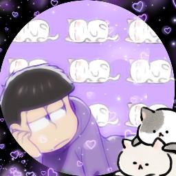 ichimatsu cats freetoedit
