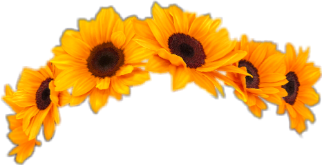 sticker cute crown flowers sunflower freetoedit