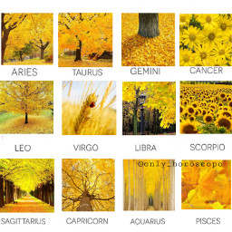 horoscope horoscopesigns zodiac zodiacsigns star