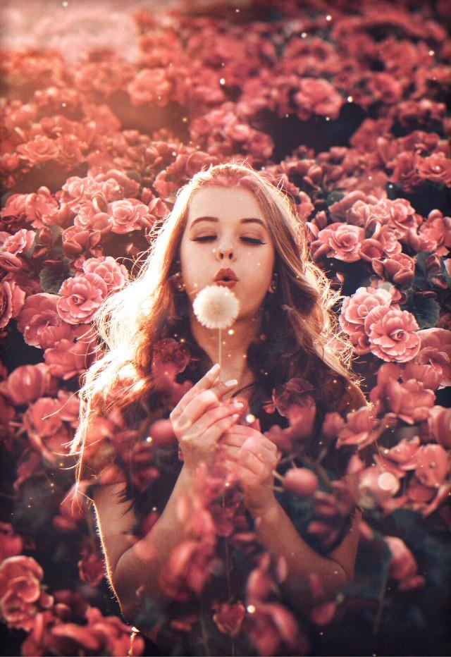 Spring has sprung! 🌷🌻🌺 Edit by @dmsql8381 #spring #flowers #springedit #floweredit #freetoedit