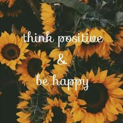sunflower_1234