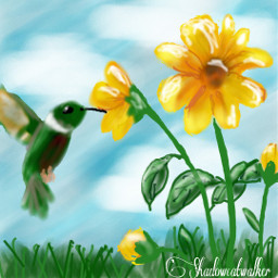 hummingbird flowers mydrawing springtime dcwelcomingspring welcomingspring spring