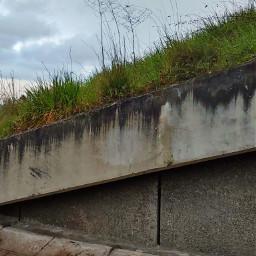 layers concrete bricks grass nature freetoedit