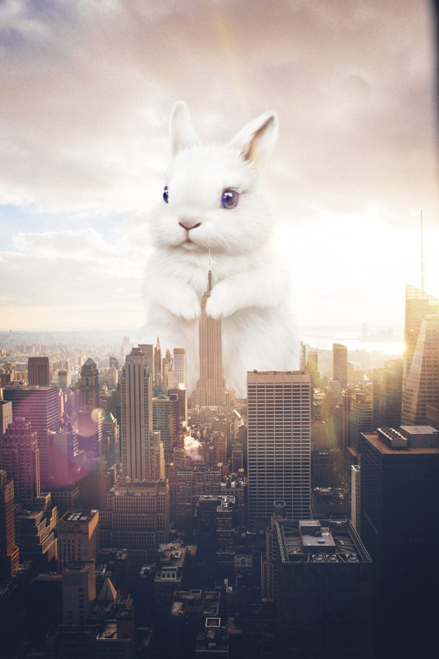 Shoutout to @aceviros for winning 2nd place 🥈in the 'Giant Animals Edit Challenge' 🏆#giant #giantanimals #bunny #cute #freetoedit