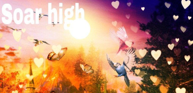 #soarhigh