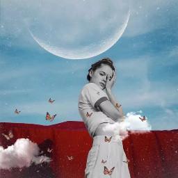 abstract butterflies moon blackandwhite freetoedit