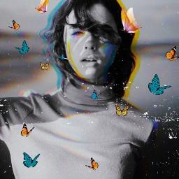 glitch blackandwhite glitcheffect butterflies freetoedit