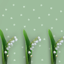 vipshoutout background spring green floral freetoedit