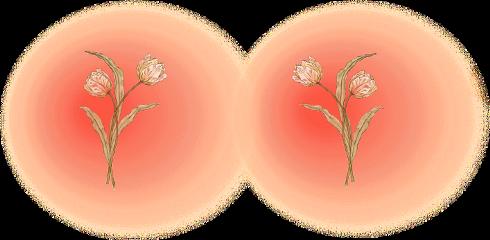blush aesthetic flower freckles filter freetoedit