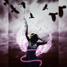 freetoedit wings love staysafe stayinspired