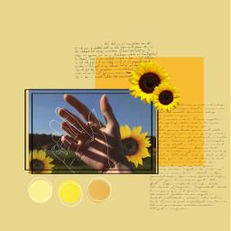 aesthetic wallpaper aestheticwallpaper sunflower arthoe freetoedit