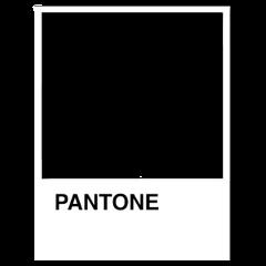 pantone aesthetic freetoedit