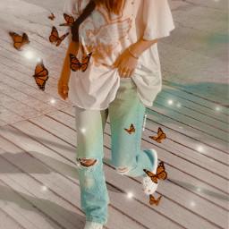 freetoedit butterflies vintage rainbow aesthetic
