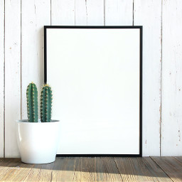 frame background backgrounds freetoedit