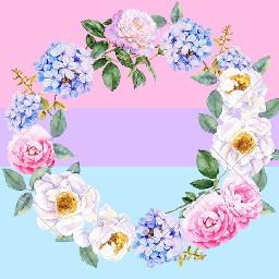 bisexual bisexuality bi bisexualpride bisexualflag