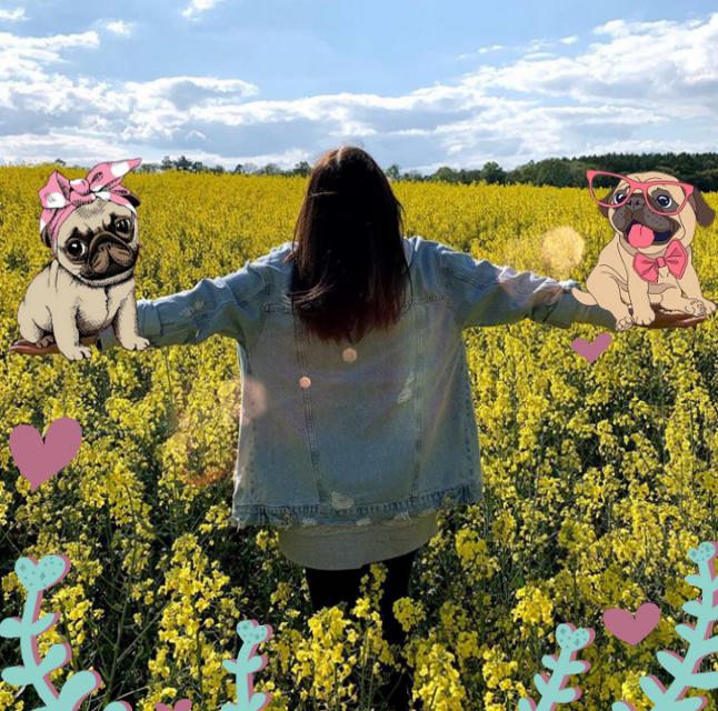 #freetoedit Dusia z mopsikami😚😚 #pug #puppy #cute #sweet #girl #polishgirl #americangirl #truebeautyisinternal #truebeauty