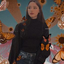 freetoedit retro vintage butterflies aesthetic