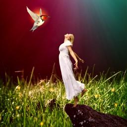 girl bird grass light rays freetoedit