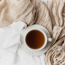 tea cup mug freetoedit