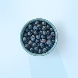 blueberry food yummy freetoedit