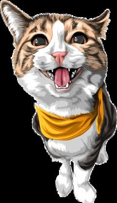 freetoedit cat kitten pet