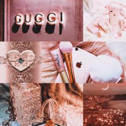 rosegold rosegoldaesthetic rich luxury luxurylifestyle