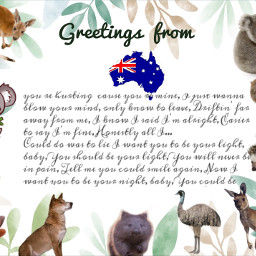 freetoedit postcard greetings australia aussie echidna ecpersonalizedpostcards