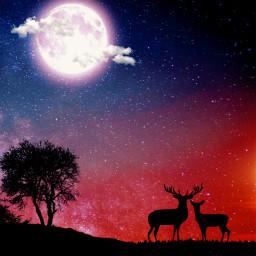 sky space moon galaxy silhouette freetoedit