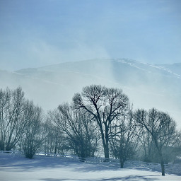 angeleyesimages snow winter landscape snowscape